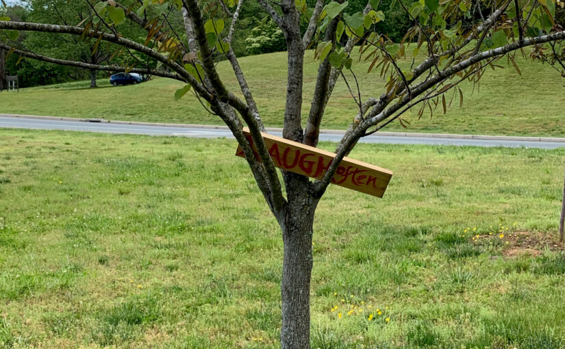 """Sign in a tree that says """"Laugh often"""""""